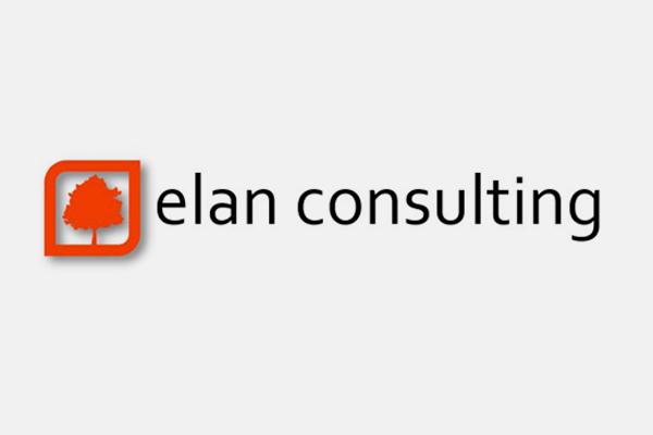 elan consulting